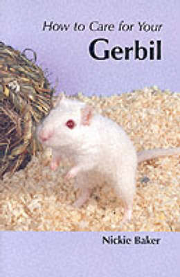 How to Care for Your Gerbil - Nicki Baker