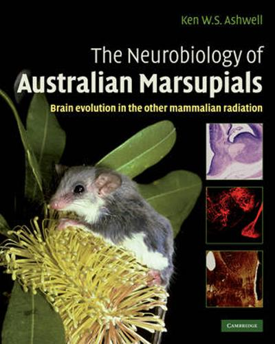 The Neurobiology of Australian Marsupials - Ken Ashwell