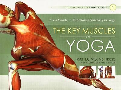 Key Muscles of Yoga - Ray Long