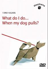 What do I do when my dog pulls? - Turid Rugaas