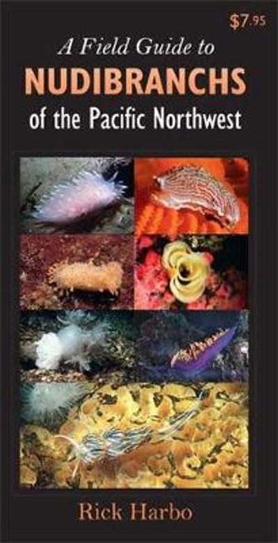 Field Guide to Nudibranchs of the Pacific Northwest - Rick M Harbo