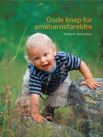 Gode knep for småbarnsforeldre PDF ePub