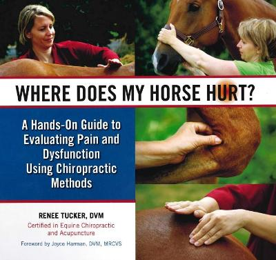 Where Does My Horse Hurt? - Renee Tucker