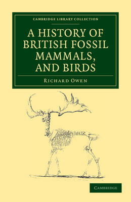 A History of British Fossil Mammals, and Birds - 