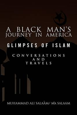 A Black Man's Journey in America - Muhammad Ali Salaam