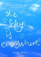 Sky Is Everywhere - Jandy Nelson