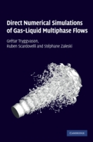 Direct Numerical Simulations of Gas-Liquid Multiphase Flows - Tryggvason/Scardovelli/Za