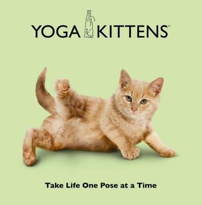 Yoga Kittens - Daniel Borris