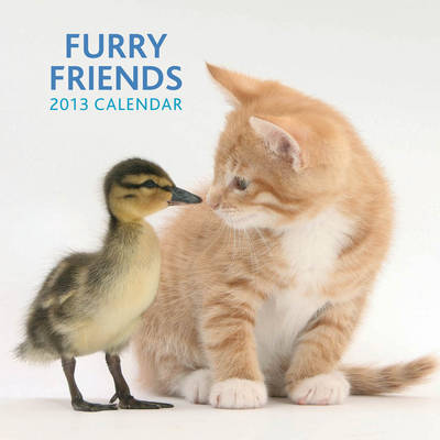 Furry Friends 2013 Calendar - Peony Press