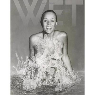 Making Wet - Leonard Koren