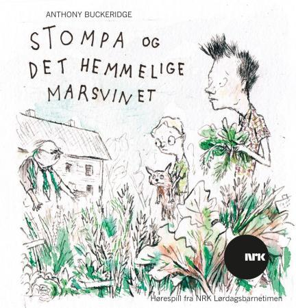 Stompa og det hemmelige marsvinet - Anthony Buckeridge