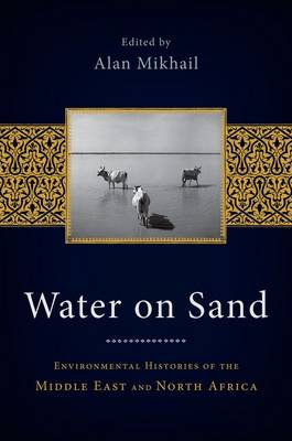 Water on Sand - Alan Mikhail