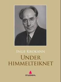 Under himmelteiknet PDF ePub