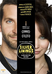 DVD Silver Linings Playbook -