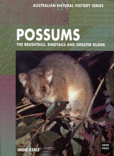 Possums - Anne Kerle