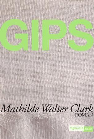 Gips PDF ePub