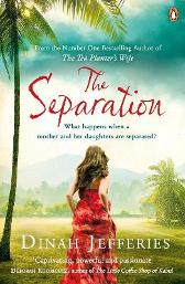The Separation - Dinah Jefferies